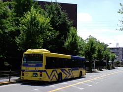 バスのサムネール画像