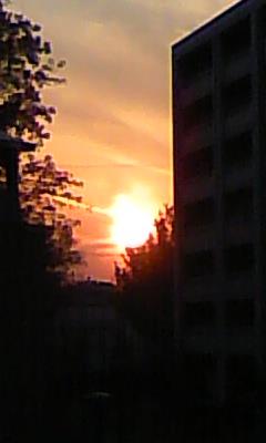 2011112901.jpg