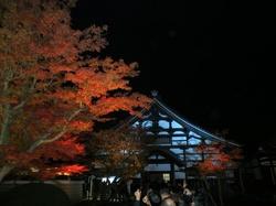 kyouto1.jpg