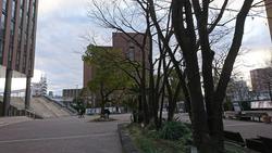 2月初の大阪経済大学の写真どすぅ