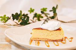 cheesecake_basic.jpg